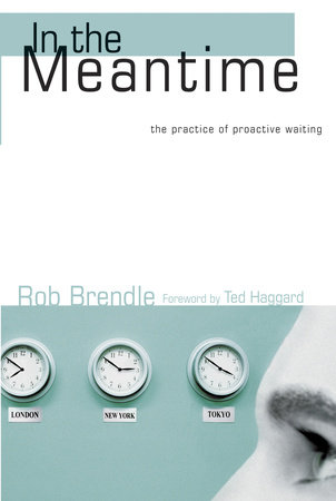In the Meantime by Rob Brendle