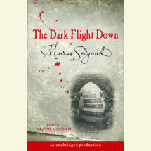 The Dark Flight Down Cover