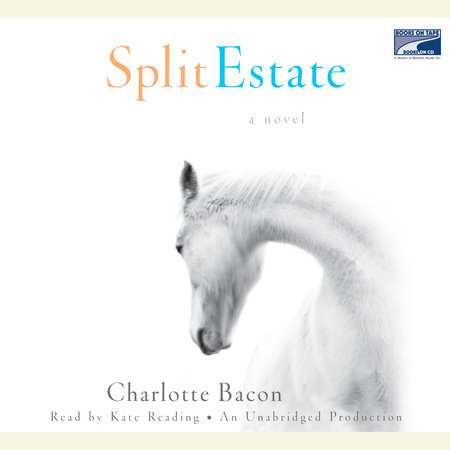 Split Estate by Charlotte Bacon