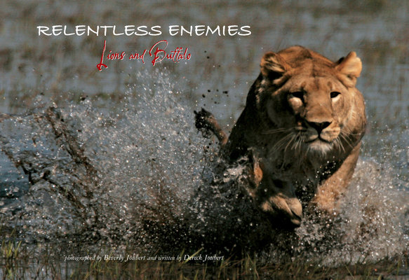 Relentless Enemies by