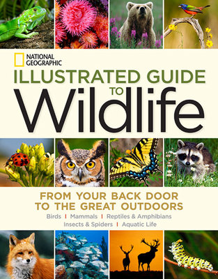 National Geographic Illustrated Guide to Wildlife by National Geographic