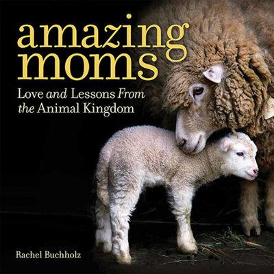 Amazing Moms
