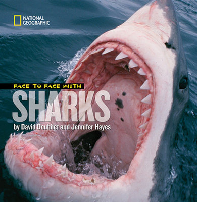 Face to Face With Sharks by Jennifer Hayes and David Doubilet