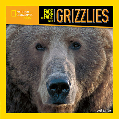 Face to Face with Grizzlies by