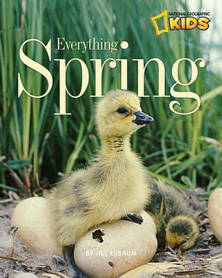 Everything Spring by Jill Esbaum
