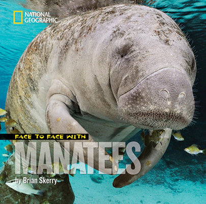 Face to Face with Manatees by