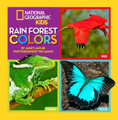Rain Forest Colors by