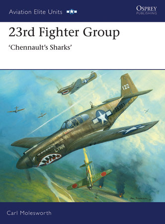 23rd Fighter Group by Carl Molesworth