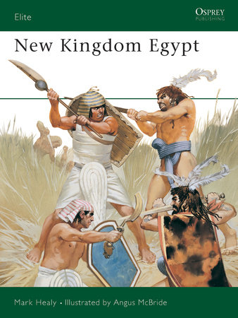 New Kingdom Egypt by Mark Healy