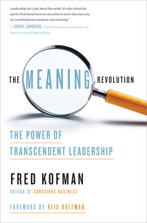The Meaning Revolution book cover