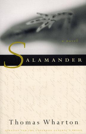 Salamander by