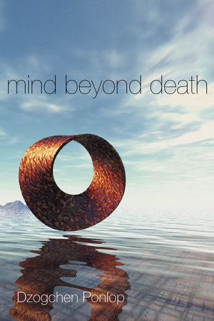 Mind Beyond Death by