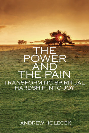 The Power and the Pain by Andrew Holecek