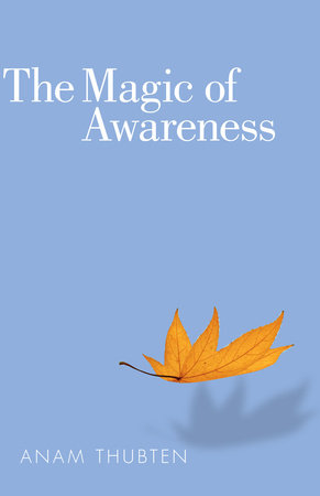 The Magic of Awareness by