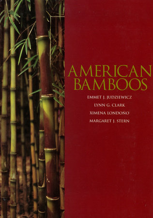 American Bamboos by