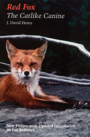 Red Fox by J. David Henry