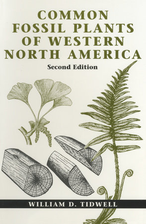 Common Fossil Plants of Western North America, Second Edition by