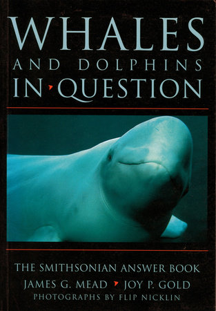 Whales and Dolphins in Question by Joy P. Gold and James G. Mead