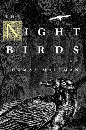 Night Birds by Thomas Maltman
