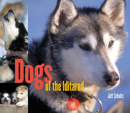 Dogs of the Iditarod by