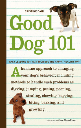 Good Dog 101 by