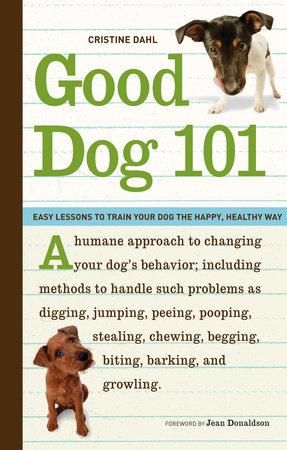 Good Dog 101