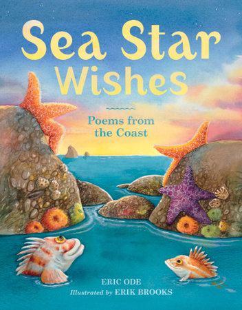 Sea Star Wishes by