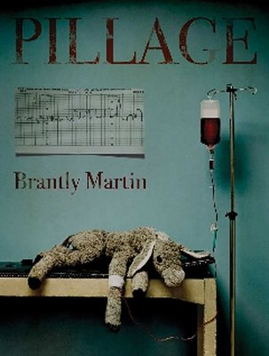 Pillage by Brantly Martin