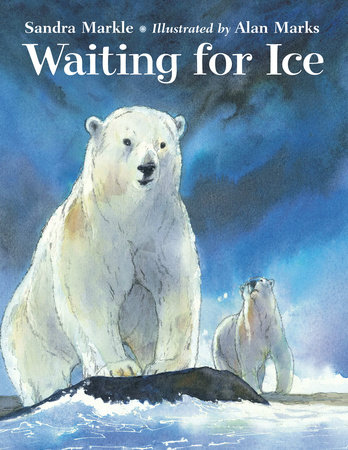 Waiting for Ice by