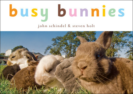 Busy Bunnies by John Schindel