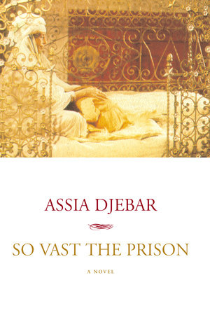 So Vast the Prison by