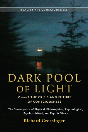 Dark Pool of Light, Volume Three by Richard Grossinger