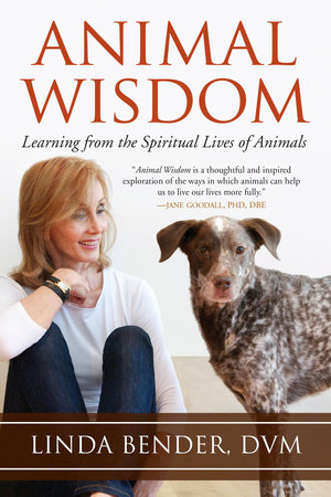 Animal Wisdom by Linda Bender