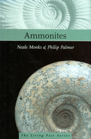 Ammonites by Neale Monks and Philip Palmer