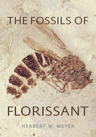 The Fossils of Florissant by