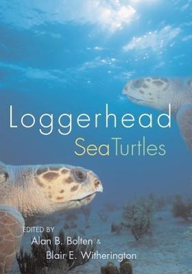 Loggerhead Sea Turtles by Alan B. Bolten and Blair E. Witherington