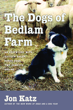 The Dogs of Bedlam Farm by