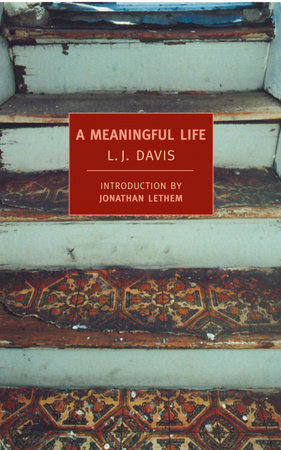 A Meaningful Life by L.J. Davis