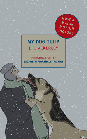 My Dog Tulip by J.R. Ackerley
