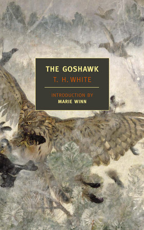 The Goshawk by T.H. White