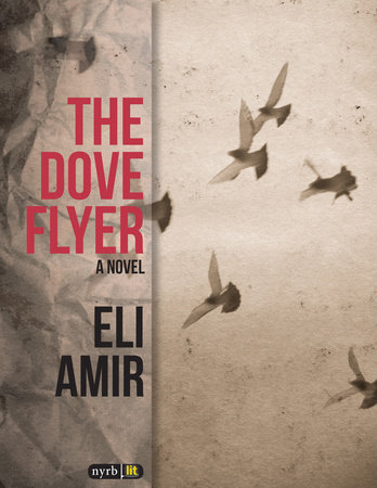 The Dove Flyer by