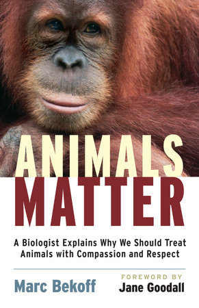 Animals Matter by Marc Bekoff