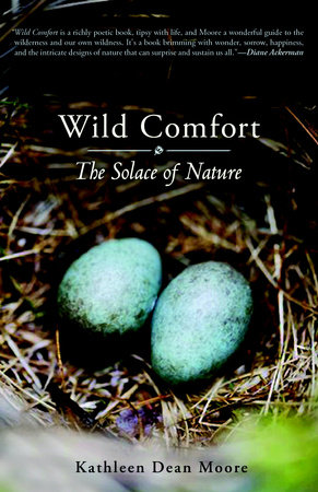 Wild Comfort by