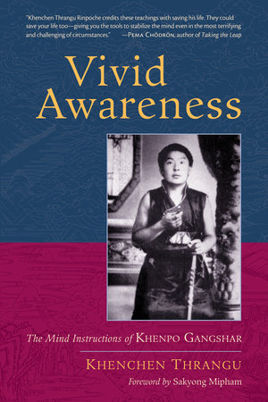 Vivid Awareness by Khenchen Thrangu