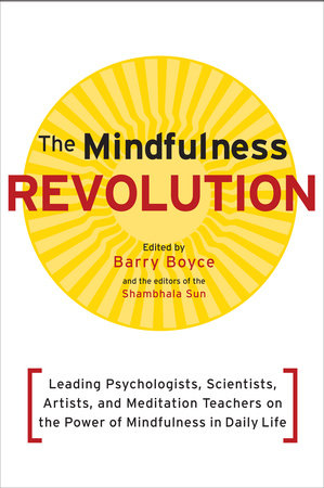 The Mindfulness Revolution by