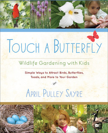 Touch a Butterfly by April Pulley Sayre