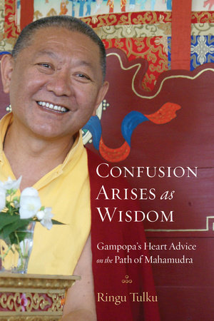 Confusion Arises as Wisdom by