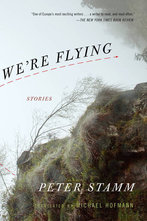 We're Flying by Peter Stamm