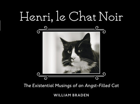 Henri, le Chat Noir by