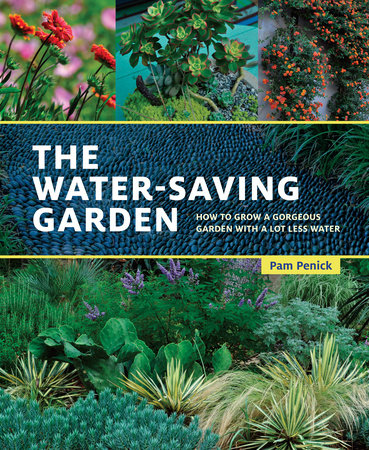 The Water-Saving Garden